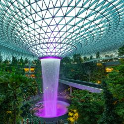 1-for-1 Food Deals at Jewel Changi Airport